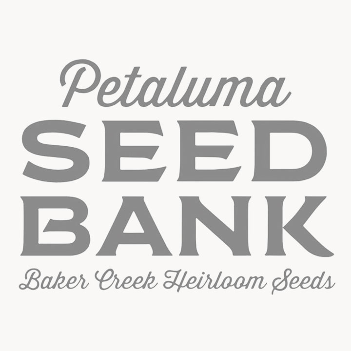The Seed Bank Logo