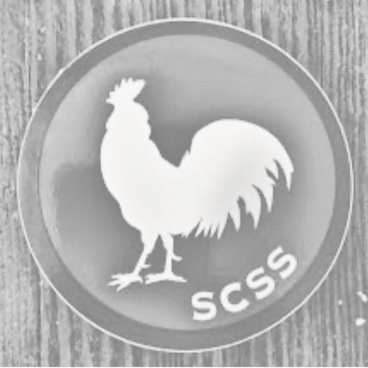 Sonoma Coast Surf & Skate Logo